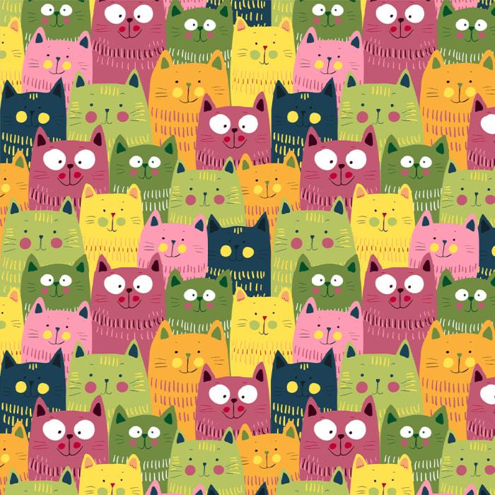 12913 - Cat 13-1000x1000